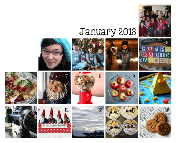 denna's ideas: Photo A Day for January 2013
