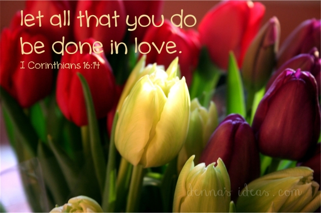 denna's ideas--tulip love