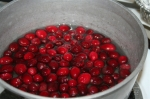 Thanksgiving Cranberry snack food ideas