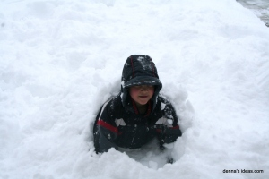 denna's ideas: first days of spring=blizzard