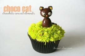 Chocolate Almond Cat (Chococat)