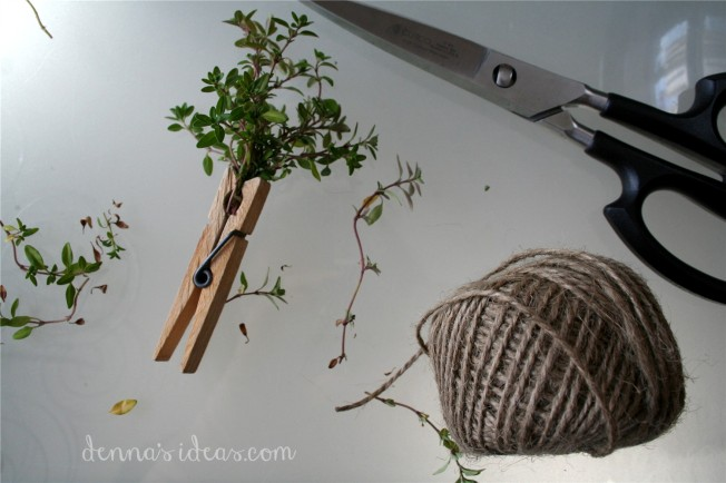 denna's ideas: thyme harvest from my garden