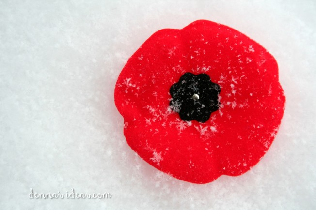 Remembrance Day poppy, Canadian Nov.11, dennasideas.com